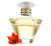 Journey Eau de Parfum