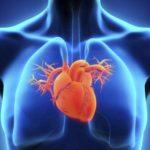 Ecocardiografia – Preço, tipos e indicações